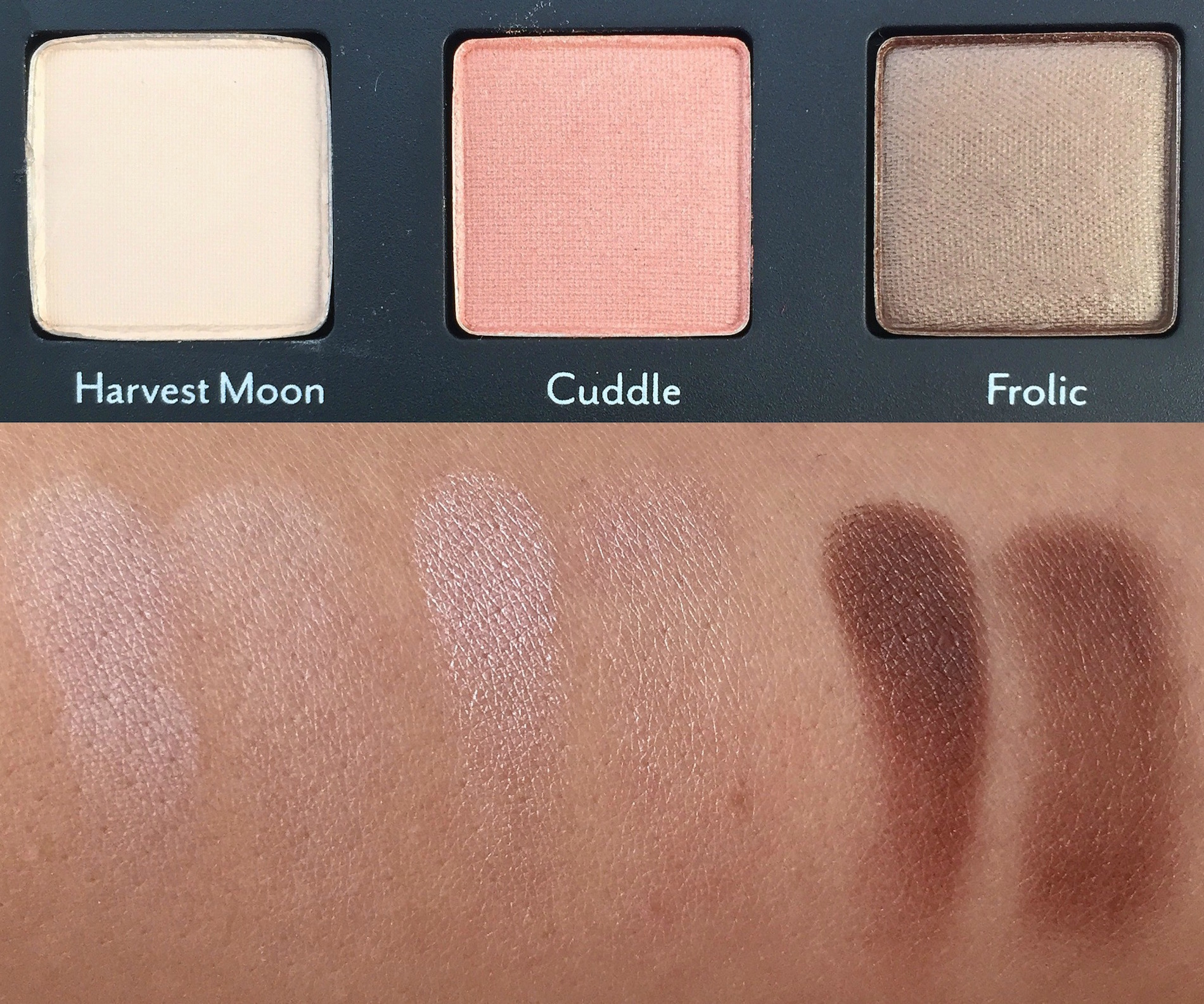 cargo-vintage-escape-swatches-1